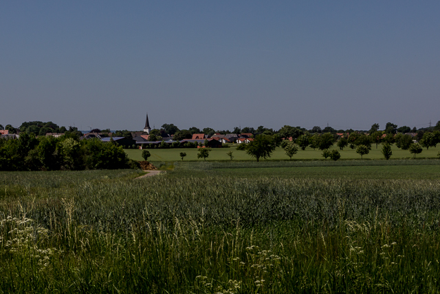 View of Dielingen from the edge of Stemwede.