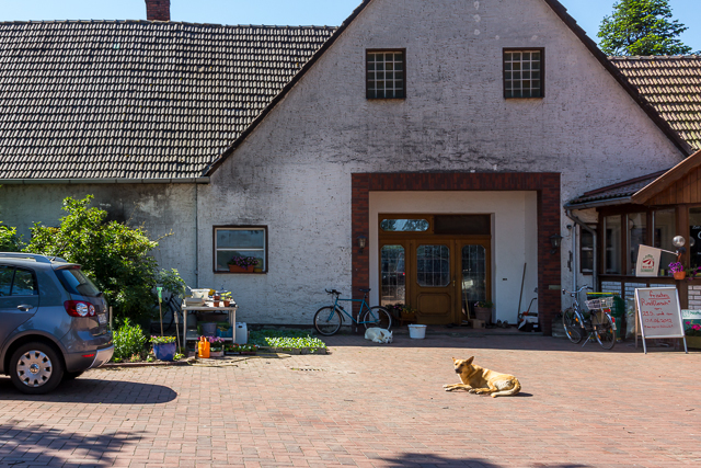 Hedemer Buchholz country store.