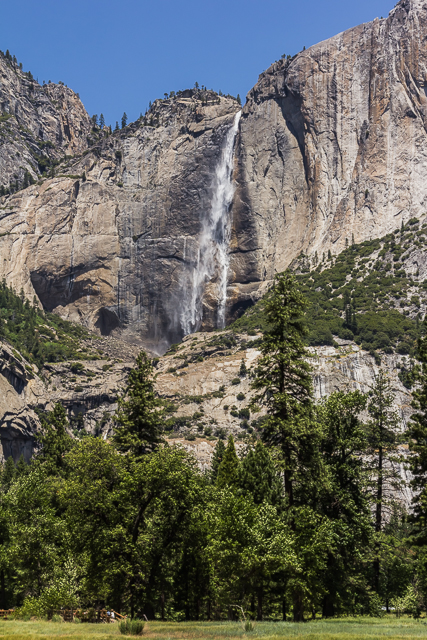 We stopped on the valley floor to get a shot of Yosemite Falls.