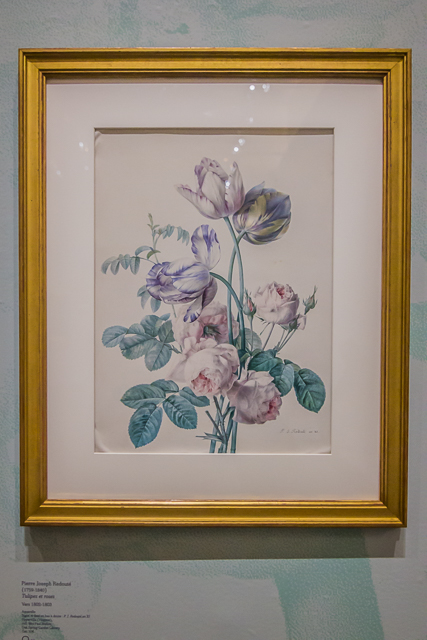 Some of the paintings exhibited were of flowers from Josephine's famous rose garden at her country estate at x.