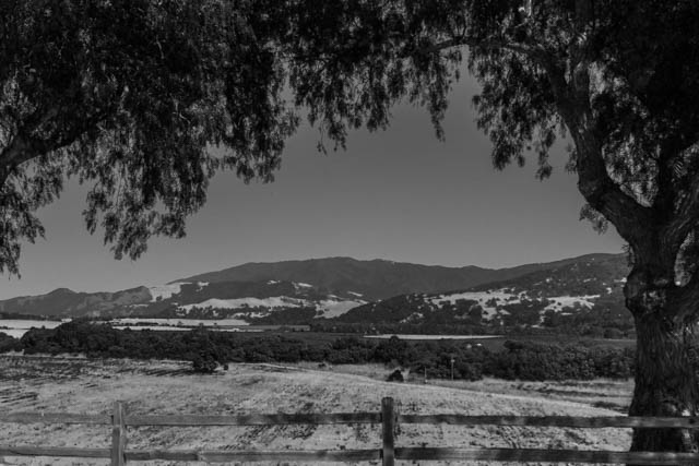 View of the Santa Ynez Valley from the front of the Mission.