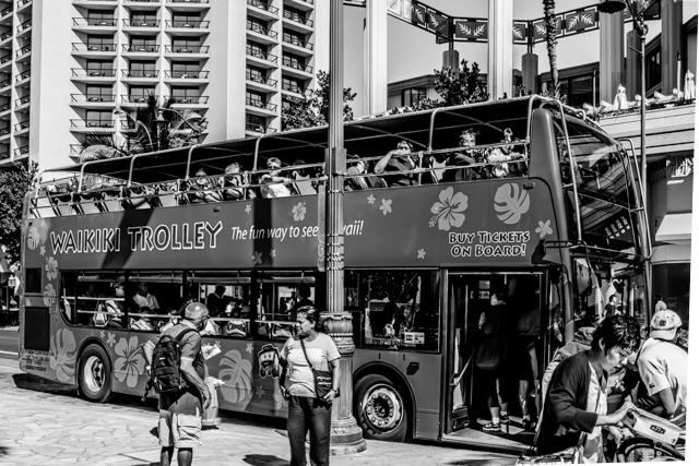 The Waikiki Trolley at the Duke Kahanamoku Statue bus stop on Kelakaua Avenue opposite the Hyatt Regency Hotel.