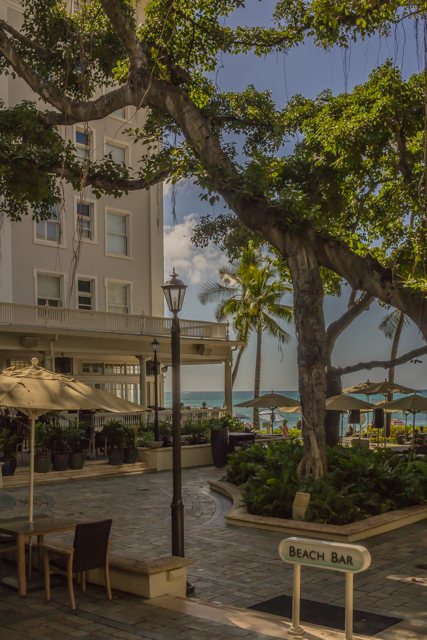 Another view of the famous banyan tree and the Moana's east wing.