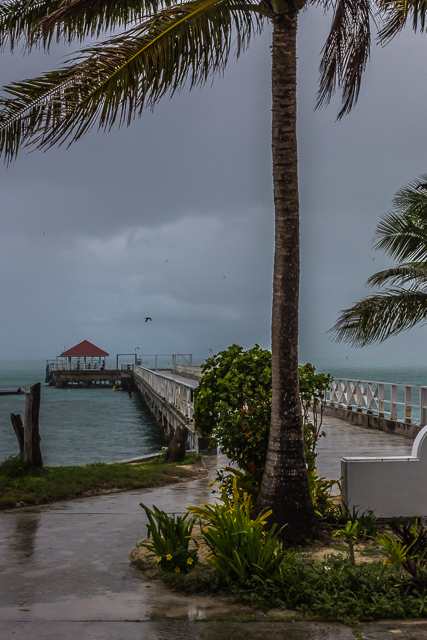 View of the pier from Center House.