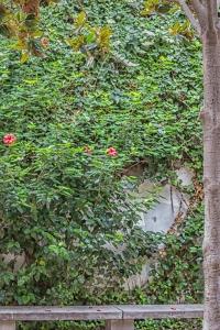 Garden rest area.