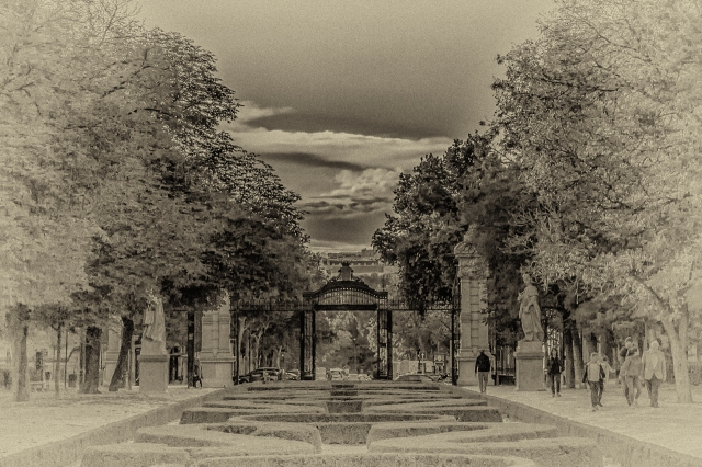 Madrid's El Retiro Park about an hour before sunset one day last October.